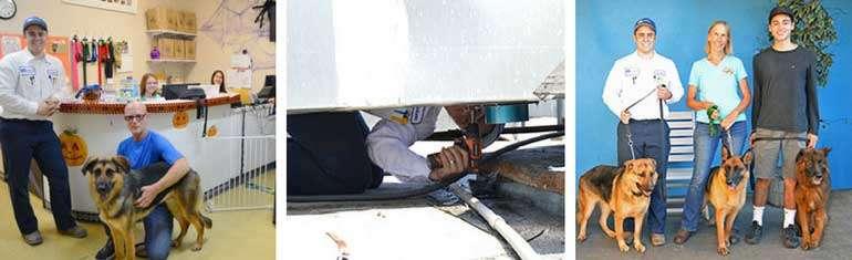 Air Scrubber Installed for Westside German Shepherd Rescue